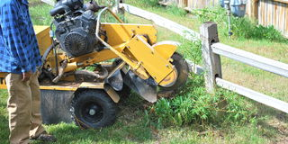 Tree stump machine. Stock Photo