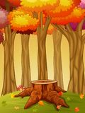 Tree stump and mushroom in the autumn forest Royalty Free Stock Photo