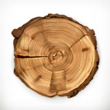 Tree stump, round cut with annual rings Stock Image