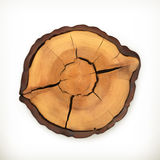 Tree stump, round cut with annual rings Royalty Free Stock Photography