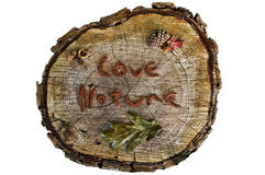Tree stump sign with the words Love Nature written. Tree stump sign with words Love Nature written with pine cone seeds. Leaves, acorn and pine cone accents the royalty free stock photos