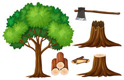 Tree and stump trees. Illustration Royalty Free Stock Photography