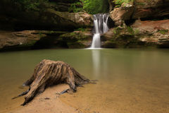 Tree Stump at Upper Falls at Old Man's Cave, Hocking Hills State Park, Ohio. Stock Photo