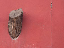 Tree stump on the wall. About people destroying the nature Royalty Free Stock Images