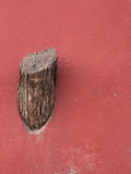 Tree stump on the wall. About people destroying the nature Stock Photos