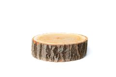 Tree stump on white background Royalty Free Stock Photography