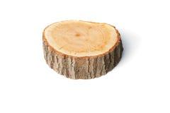 Tree stump on white background Stock Photo