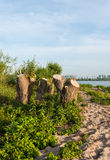 Tree stumps on the banks of a river Royalty Free Stock Photos