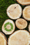 Tree stumps on the grass with recycle symbol Stock Photos