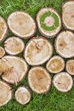 Tree stumps on the grass with recycle symbol Royalty Free Stock Images