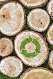 Tree stumps on the grass with recycle symbol Royalty Free Stock Photo