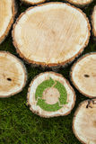 Tree stumps on the grass with recycle symbol Stock Photo
