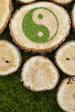 Tree stumps on the grass with ying yang symbol Stock Photos