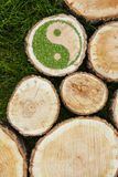 Tree stumps on the grass with ying yang symbol. Tree stumps on the grass with green ying yang symbol Stock Images
