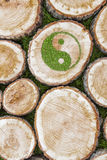 Tree stumps on the grass with ying yang symbol Royalty Free Stock Photos