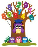 Tree with stylized school owl theme 4 Royalty Free Stock Photography