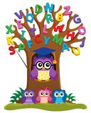 Tree with stylized school owl theme 3 Stock Images
