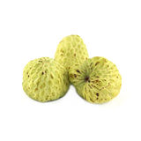 Tree Sugar Apple and Royalty Free Stock Photography