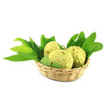 Tree Sugar Apple and leaves Stock Images