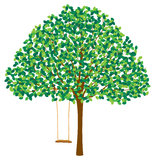 Tree in Summer with Swing Stock Images