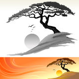Tree and Sun Landscape. Silhouette bonsai like tree and sunset landscape with flying bird creates a perfect scene Royalty Free Stock Images