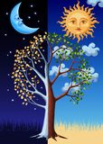 Tree, sun and moon Royalty Free Stock Image