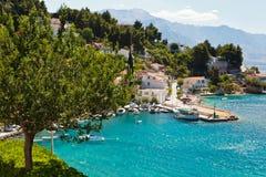 Tree and Sunny Adriatic Bay Stock Photography