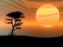 Tree in the sunset. Tree silhouette against a very hot sunset vector illustration