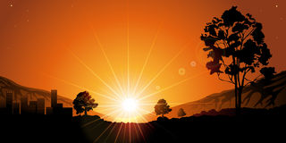 Tree in Sunset. Colourful sunset. Sunlight in the sky Royalty Free Stock Photo