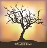 Tree sunset sunrise. Tree sunset summer time sunrise Vector Illustration
