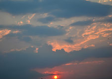 Tree sunset Stock Image
