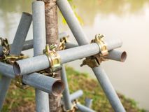 Tree Supporter. Bracing and Protecting The Trees with The Steel Pipes Royalty Free Stock Photo