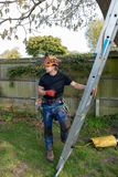 Tree Surgeon with a ladder royalty free stock photo