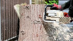 Cutting up a tree stump with a chainsaw