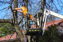 Tree surgeon with helmet and full equipment on cherry picker sawing limb off of a tree in front of tile roof and blue sky Tulsa Ok royalty free stock photo