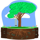 Tree swing Stock Images