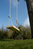 Tree Swing in the garden Royalty Free Stock Image