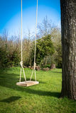 Tree Swing in the garden Stock Images