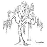Tree with a swing Royalty Free Stock Photo