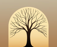 Tree symbol Royalty Free Stock Image