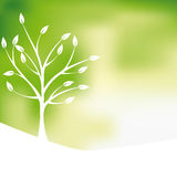 Tree Symbol Royalty Free Stock Image