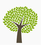 Tree symbol Royalty Free Stock Photos