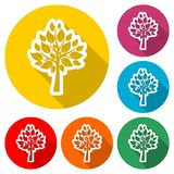 Tree symbol, Tree icon, color icon with long shadow. Simple vector icons set Royalty Free Stock Image
