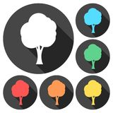 Tree symbol, Tree icons set with long shadow. Vector icon Stock Images