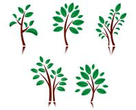 Tree symbols Stock Photos