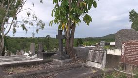Tree taken root between two graves. This is close to the highest point of Toowong cemetery Brisbane, looking SW towards Mount Coo-tha, at February 19th 2017 stock footage