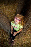 Tree Temper Tantrum. Cute little girl having a temper tantrum in a tree when she is too tired to walk anymore royalty free stock photo