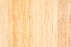 Tree texture. Timber light natural pattern. Wood grain background Stock Images