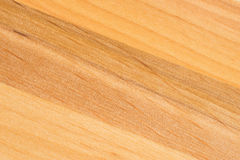 Tree texture. Timber light natural pattern. Wood grain background Royalty Free Stock Photography