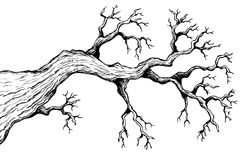 Tree theme drawing 3 Royalty Free Stock Image